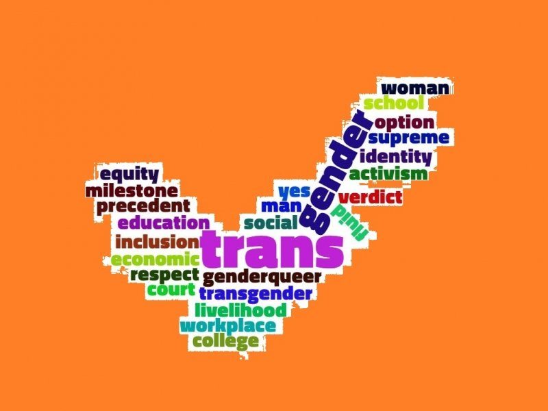 Word cloud in the shape of a 'yes' tick mark on the theme of transgender socio-economic inclusion – it includes words like 'transgender', 'trans*', 'gender', 'woman', 'man', 'genderqueer', 'fluid', 'equity', 'economic', 'inclusion', 'court' and 'verdict'. Graphic credit: Pawan Dhall