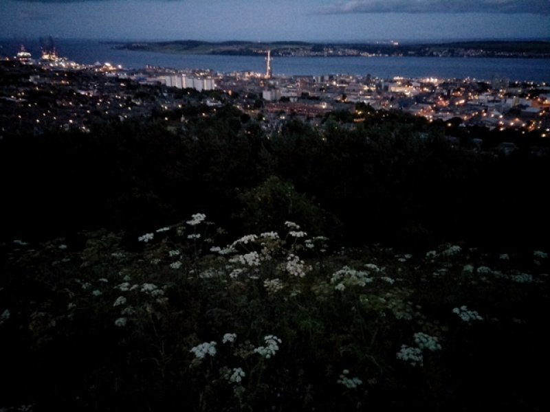 This main photograph shows an evening view of Dundee city in Scotland from the Law, a hill formed by an extinct volcano that is also the highest point of Dundee. The word 'law' itself in Scots means 'hill'. In the foreground several clumps of a white flowering plant can be seen on the slope down from the viewpoint, which is on top of the hill. Further below is dense foliage of trees in darkness. Further below are the city lights of streets and buildings right up to the Tay riverside. Across the blue expanse of the Tay River is the Tay Road Bridge that connects Dundee to Fife on the far side. The bridge is lit up almost like a white band across the river. More hills can be seen across the river and then a partially clouded grey skyline. Photo credit: Pawan Dhall.