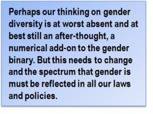 Quote: Perhaps our thinking on gender diversity is at worst absent and at best still an after-thought, a numerical add-on to the gender binary. But this needs to change and the spectrum that gender is must be reflected in all our laws and policies.