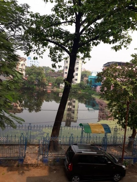 The photograph shows a daytime long shot of the pond and park mentioned in the article – as taken from the author's first floor window. A large leafy tree dominates the centre of the photograph. Adjacent to it are more trees and behind it is the water body surrounded by still more trees and houses, including a few multi-storied buildings. The reflection of the trees and houses can be seen in the water. Green algae cover the water surface near the edges of the pond. The large tree is inside the narrow park mentioned in the article – more like a sliver of an enclosure with a tiled ground and bounded by a blue-white iron railing on all sides. Inside the enclosure, to the right of the large tree, is a marble topped bench covered by an arched shelter made of green, yellow and blue fibre glass material. This is one of the benches on which the incidents narrated in the article occurred. The enclosure has a small gate opening on to the lane on which the author's house stands. Next to the gate a small black car is parked, and next to the car is a lamp post. No human being can be seen in the photograph anywhere. Photo credit: Shampa Sengupta